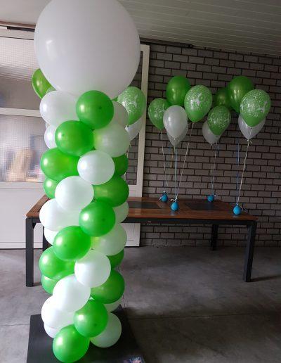 robuuste groen wit 45