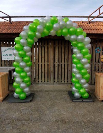 ballonboog groen zilver 1